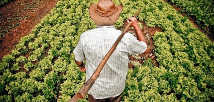 agricultura_familiar-780x440