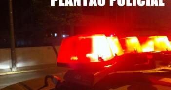 Plantão 1