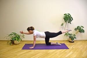 Coloque suas mãos embaixo dos ombros e os joelhos abaixo dos quadirs. Levanta um braço e a perna oposta, alternando entre os lados. Faça esse gesto de 20 a 30 vezes, descanse por 30 a 60 segundos, e repita tudo até cinco vezes. O exercício fortalece abdômen, glúteos e músculos das costas.