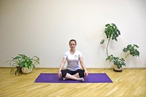 Sente confortavelmente, com as pernas cruzadas (se não gostar, pode sentar em uma cadeira). Deixe as costas eretas. Feche os olhos, relaxe o corpo e aprofunde a respiração lentamente. Concentre-se na respiração, e tente não ficar focado em um único pensamento ou preocupação. Mantenha essa posição de 5 a 10 minutos ou mais, para acalmar a mente.